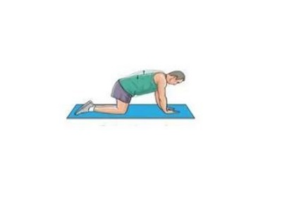 Back/ Core Exercises